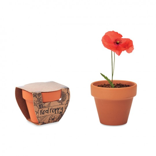 Vaso Red Poppy