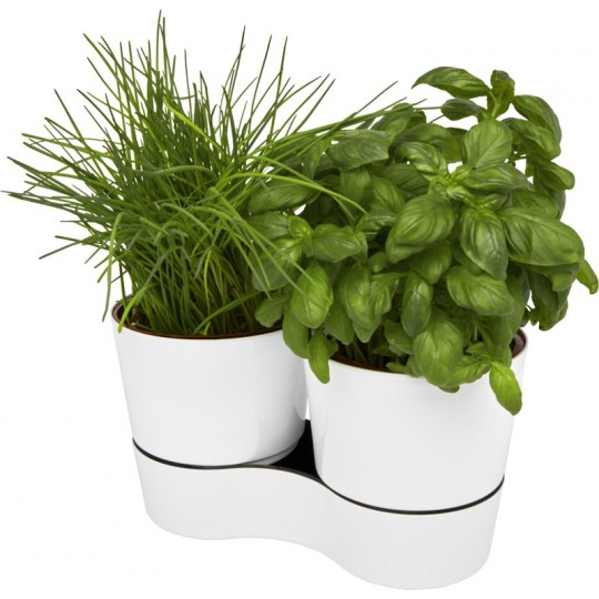 Vaso Mepal de cozinha duplo Herbs